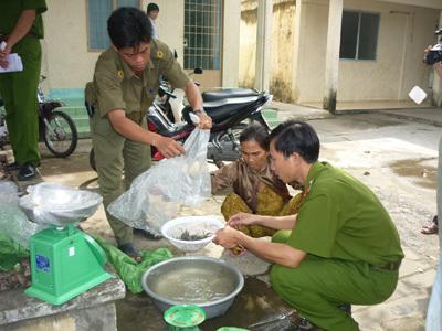 Bà Phạm Thị Luận, ngụ ấp Ngọc Hải, xã Đông Hưng A cùng Công an huyện An Minh cân lại 1kg tôm giống mới mua chỉ còn 200 gram.