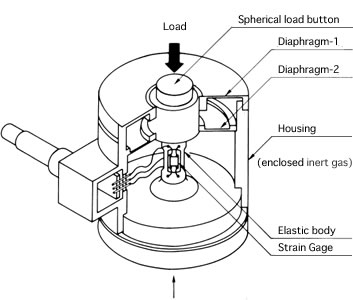 cam-bien-tai-tec_load-cell_02-hoasenvang