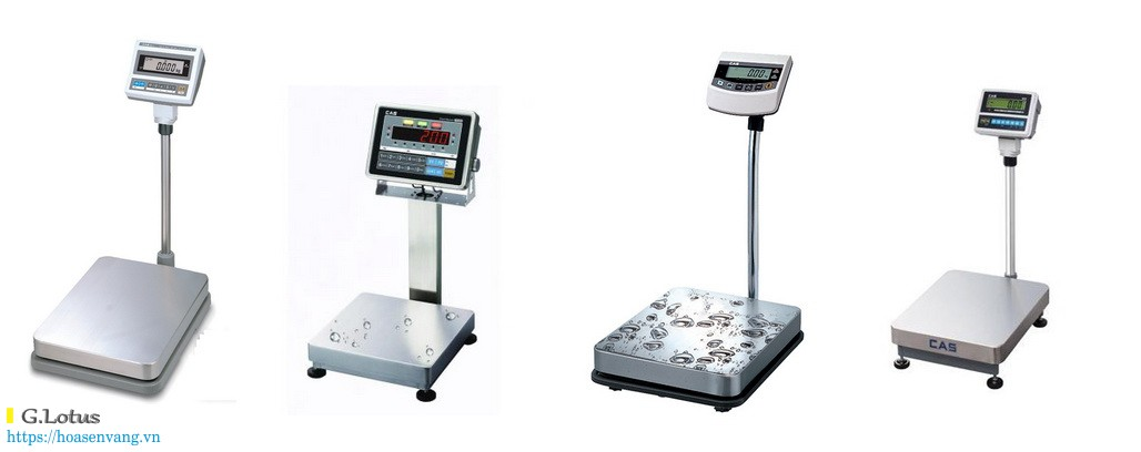 Giới thiệu mẫu Cân bàn điện tử CAS Hàn Quốc